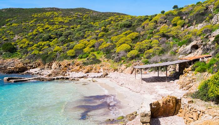 Escursioni: Cala Sabina Asinara